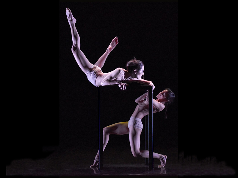 13-deuces-julia-theaterhaus-stuttgart